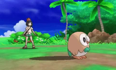 Watch and share Rowlet GIFs on Gfycat