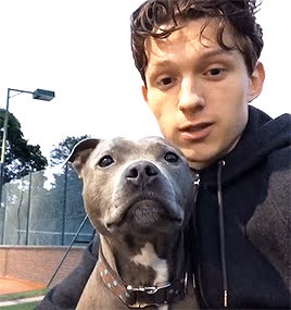 tom holland, I Don't Work Right Up Here GIFs