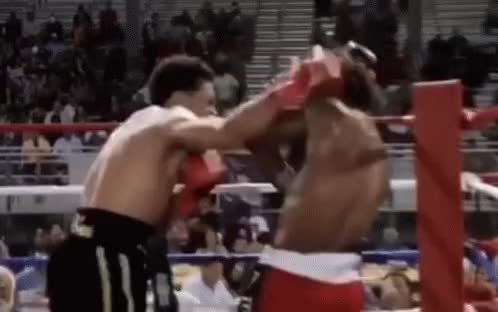 Watch Knockout GIF on Gfycat. Discover more related GIFs on Gfycat
