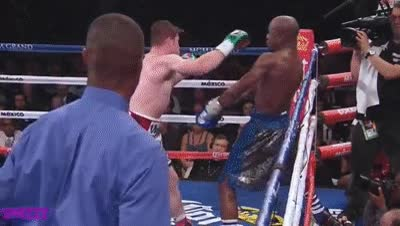 Watch floyd mayweather GIF on Gfycat. Discover more related GIFs on Gfycat