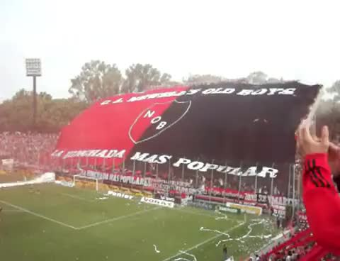 Watch and share Newells GIFs and Lepra GIFs on Gfycat
