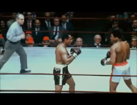 Watch Muhammad Ali - Amazing Speed GIF on Gfycat. Discover more related GIFs on Gfycat