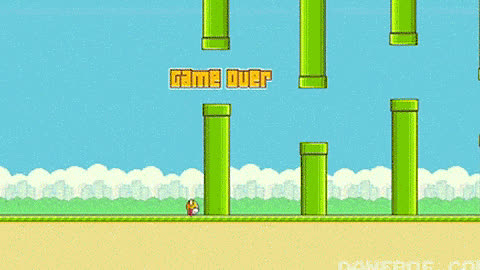 Flappy Bird funny gifs #ReactionGifs GIFs