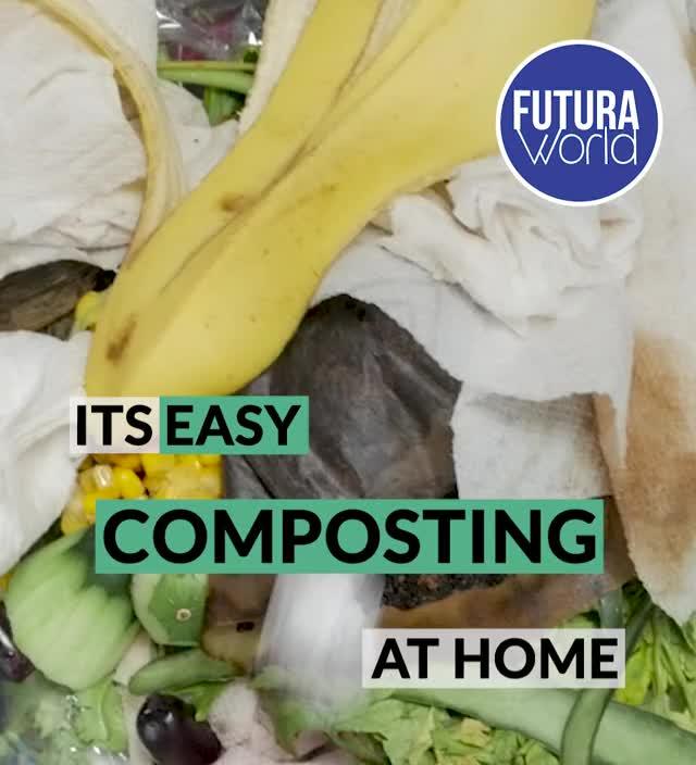 Watch and share Environment Compost Bin (FUTURA) GIFs by Nikkie Cinco Munda on Gfycat