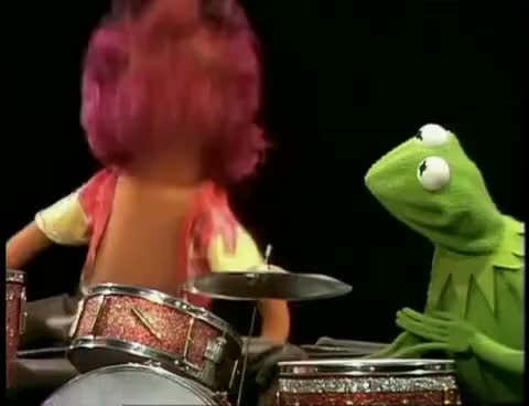 Watch Animal GIF on Gfycat. Discover more DRUM DRUM DRUM GIFs on Gfycat
