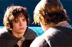 Watch and share 30 Day Challenege GIFs and Frodo X Sam GIFs on Gfycat