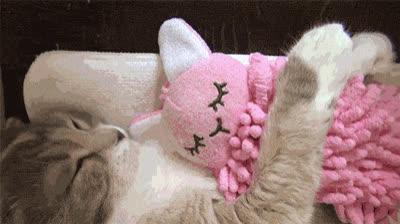 adorable, awww, cat, cute, hug, precious, stuffed animal, sweet, Cat and Stuffed Animal GIFs