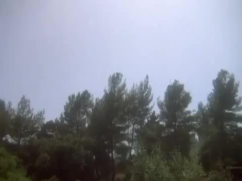 Watch Hulk Toss Bear GIF on Gfycat. Discover more hulk, humansbeingbros, toss GIFs on Gfycat
