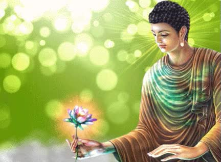 anivdo buddha