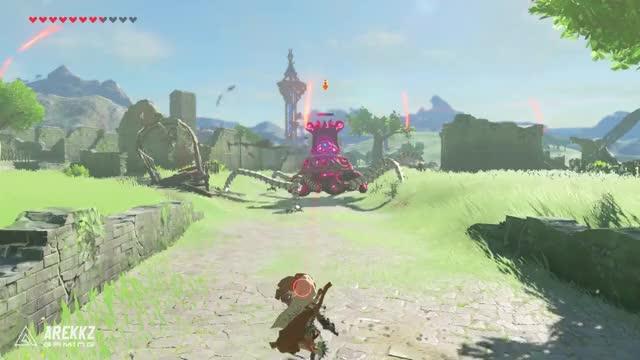 Watch Zelda BotW Parry2Win GIF on Gfycat. Discover more zelda breath of the wild combat GIFs on Gfycat