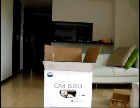Watch Maru GIF on Gfycat. Discover more Maru Soon GIFs on Gfycat