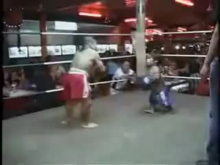 Watch this trending GIF on Gfycat. Discover more Fighting, ROFLCOPTER, boxing, brandonm8969, dwarf, fight, lmfao, muay, rofl, thai GIFs on Gfycat