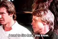 Watch this return of the jedi GIF on Gfycat. Discover more han solo, han's faces here are great, luke skywalker, mygif, return of the jedi, star wars, star wars return of the jedi, swedit, the sass GIFs on Gfycat