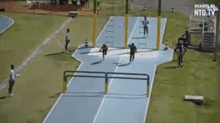 Brazilian military pentathlon obstacle course relay (gif version) • r/theocho GIFs