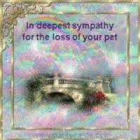 Watch and share Loss Of Pet Photo: Loss Of Pet Rainbowbridge3.gif GIFs on Gfycat