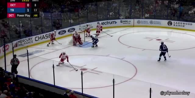 Watch and share Detroit Red Wings GIFs and Hockey GIFs by peterwiim on Gfycat