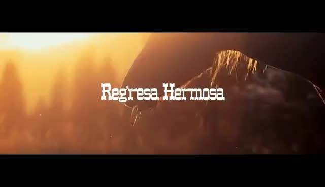 Watch Gerardo Ortiz - Regresa Hermosa (Official Video) GIF on Gfycat. Discover more related GIFs on Gfycat