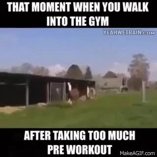 Watch and share Too Much Pre-work Out Before Gym :P Studio P Innovations How Vinny Kraft Walks In The GIFs on Gfycat