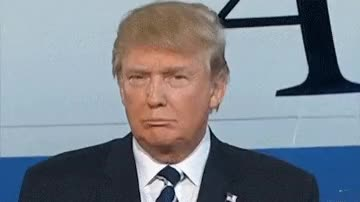 Watch and share Donald Trump GIFs by Pornlantis on Gfycat
