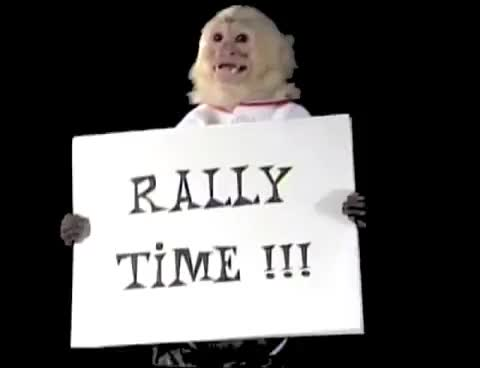 Watch and share Rally Monkey GIFs on Gfycat
