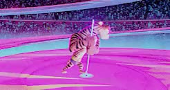 Watch apricot edits GIF on Gfycat. Discover more dreamworks animation, europe's most wanted, gifs: madagascar 3, gifs: movie, gtkm, madagascar 3, madagascar 3: europe's most wanted GIFs on Gfycat