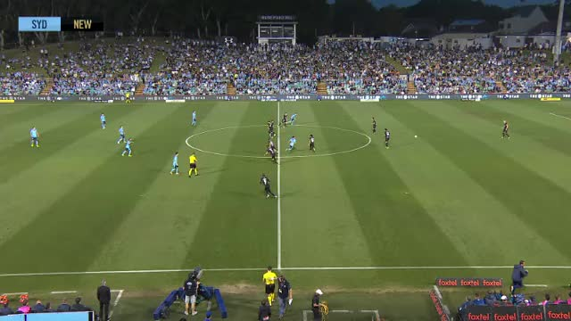 Watch and share Newcastle United GIFs and Soccer GIFs on Gfycat