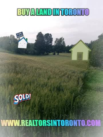 Watch and share Buy A Land In Toronto GIFs by cr3499878 on Gfycat