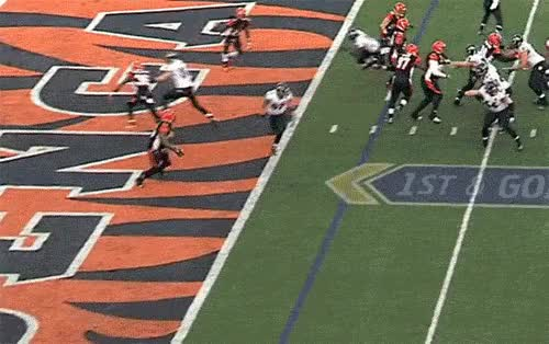 Watch and share Vontaze Burfict Lays Out Bengals Maxx Williams GIFs on Gfycat