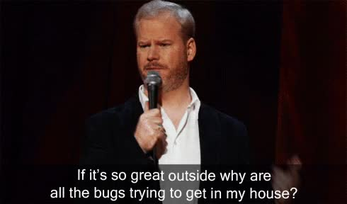 Watch and share Jim Gaffigan GIFs and Comedy GIFs on Gfycat