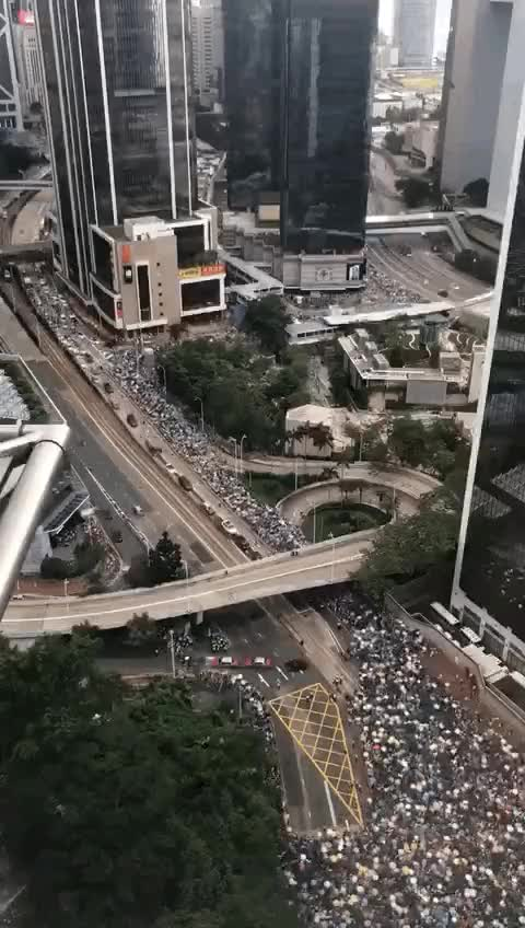 Watch Protests in Hong Kong GIF on Gfycat. Discover more related GIFs on Gfycat