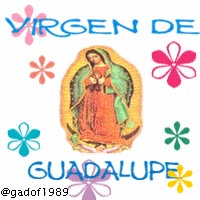 Watch and share IMAGEN BBM: VIRGEN DE GUADALUPE GIF GIFs on Gfycat