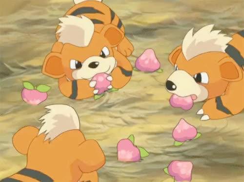 Watch this GIF on Gfycat. Discover more Growlithe, gifs*, pokegraphic, pokemon, pokemon* GIFs on Gfycat