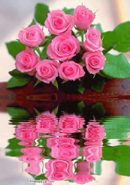 Watch and share Pink Rose Bouquet Pink Water Flowers Animated Roses Gif GIFs on Gfycat