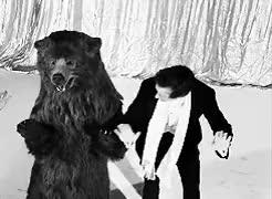 Watch and share Eddie Redmayne GIFs and Bear GIFs on Gfycat