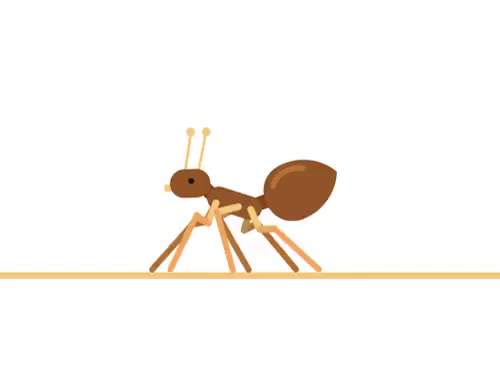 Watch this ant GIF on Gfycat. Discover more 2d animation, 2d illustration, anidays, animated gif, ant, ants, gif, loop animation, walkcycle GIFs on Gfycat