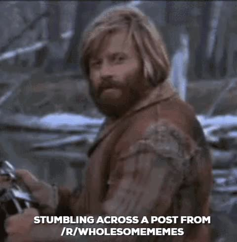 Watch this GIF on Gfycat. Discover more Zach Galifianakis, wholesomememes GIFs on Gfycat