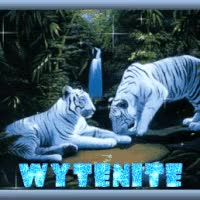 Watch and share Wyte Tigers GIFs on Gfycat