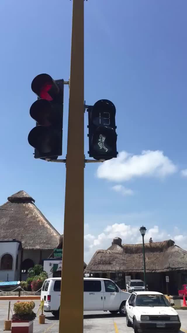 Watch mexican crosswalk GIF on Gfycat. Discover more cancun, crosswalk, mexico GIFs on Gfycat