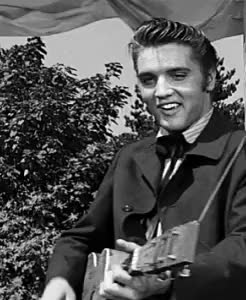 Watch and share Love Me Tender GIFs and Elvis Presley GIFs on Gfycat