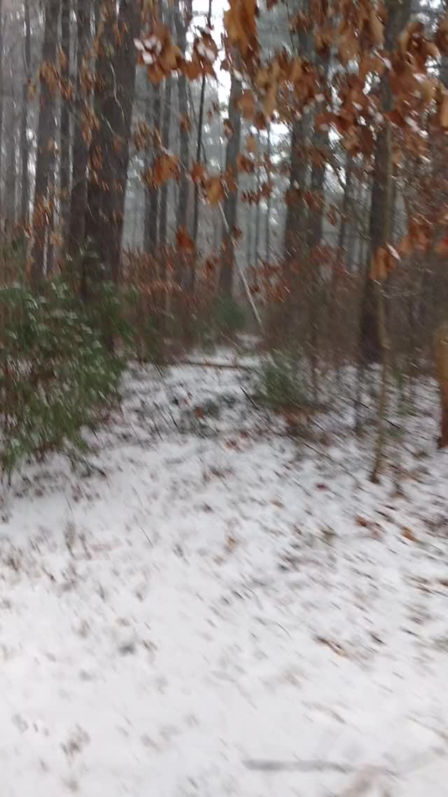Watch VID 20180207 114429379 GIF on Gfycat. Discover more related GIFs on Gfycat