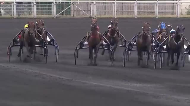 Watch and share Hippodrome GIFs and Vincennes GIFs on Gfycat