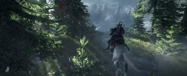 Watch and share Witcher-3 GIFs on Gfycat