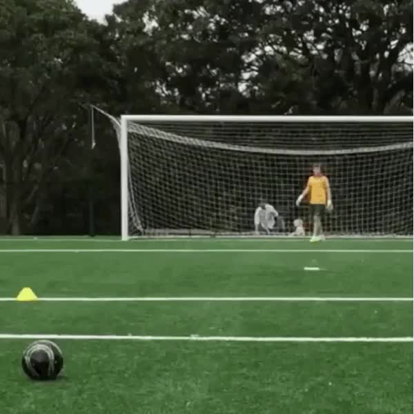 Watch and share Nice Curve On The Ball (reddit) GIFs on Gfycat