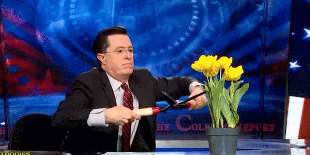 Watch and share Stephen Colbert GIFs and Flowers GIFs on Gfycat