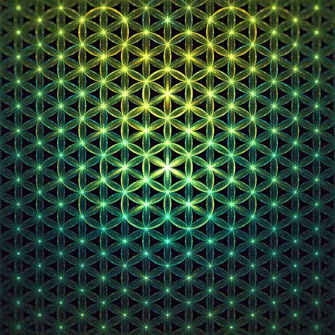 Watch What do you see in your patterns? (reddit) GIF on Gfycat. Discover more LSD, SacredGeometry, lsd GIFs on Gfycat