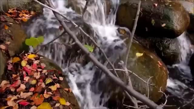 Watch and share Waterfall GIFs and Autumn GIFs by P.Gifs on Gfycat