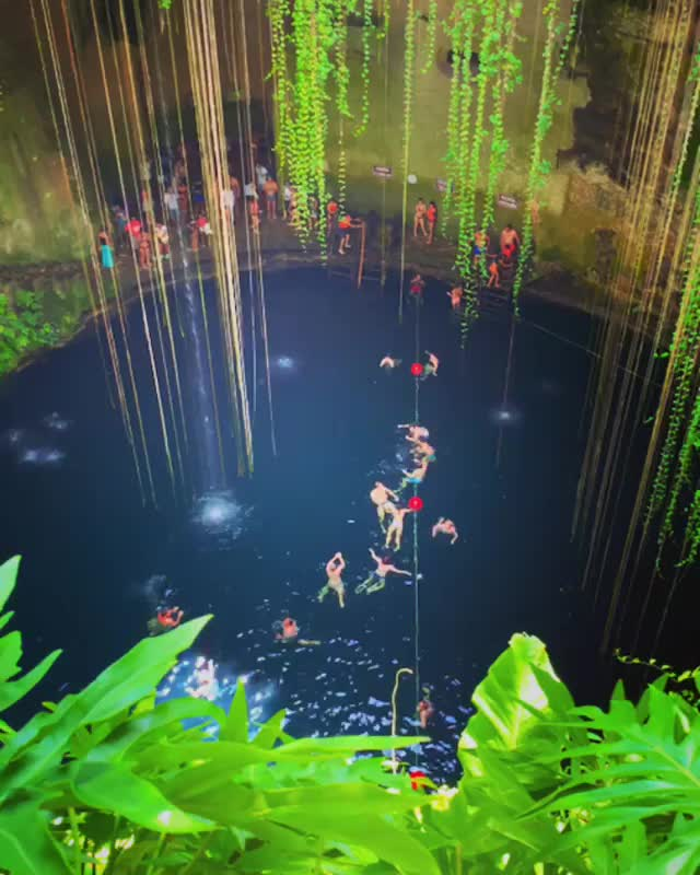 Watch and share People Swimming In Cenote In Yucatán, Mexico GIFs by tothetenthpower on Gfycat