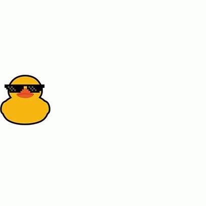 Watch and share Papaki Ducks GIFs on Gfycat