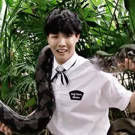 Watch cutie's scared of snakes GIF on Gfycat. Discover more 1k, bangtan, bts, g:bts, gifs, hoseok, j hope, jhope GIFs on Gfycat