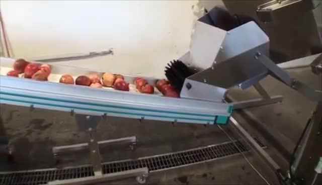 NIKO Pomegranate juice processing GIFs